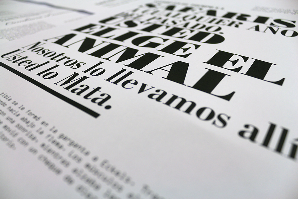 VIRGEN_Taller_Enter_the_Type_Tipografia_Paula_Erre_Abril_2015_15